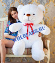 'купить большого медведя'