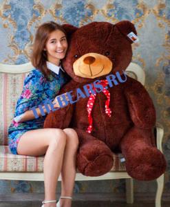 'большие медведи в Казани'